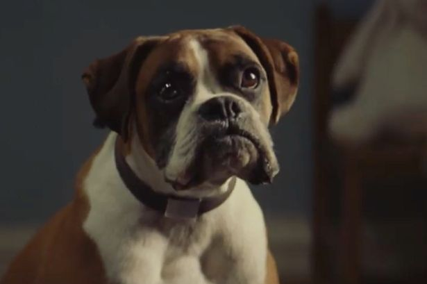 How to be Better at Video Marketing than John Lewis – Branded Viral Video of the Week